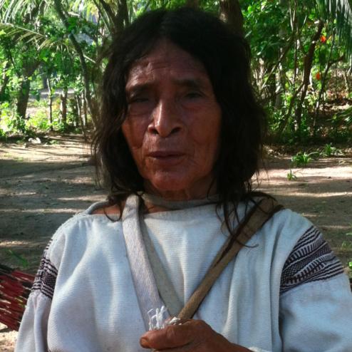 Kogi Elder Mamo Luis